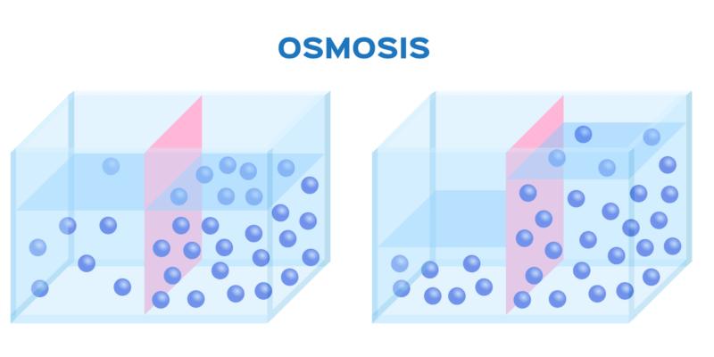 que es una fosa septica y la osmosis